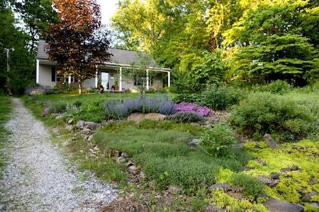Front Hillside Garden 2