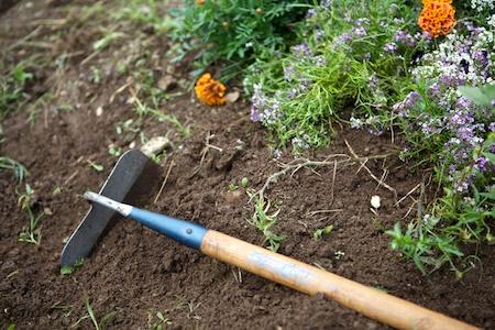weeding the garden 4