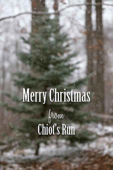 Merry Christmas from Chiots Run copy