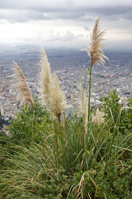 monserrate 9