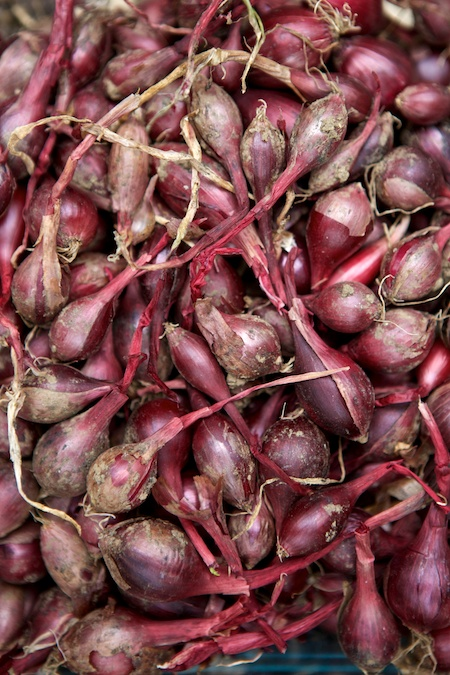 red pearl onions 1