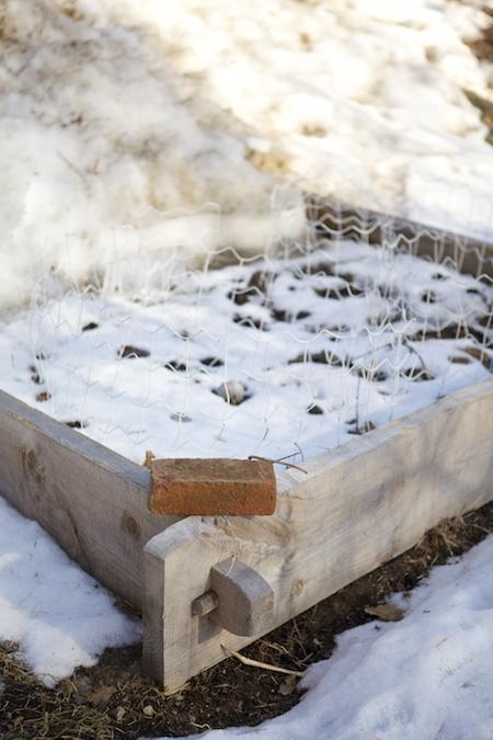 5x5 garden in winter 2