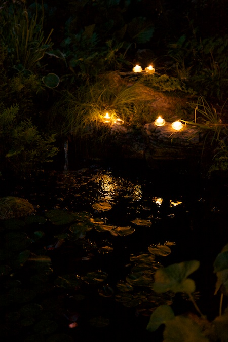 mclaughlin garden illuminated 15