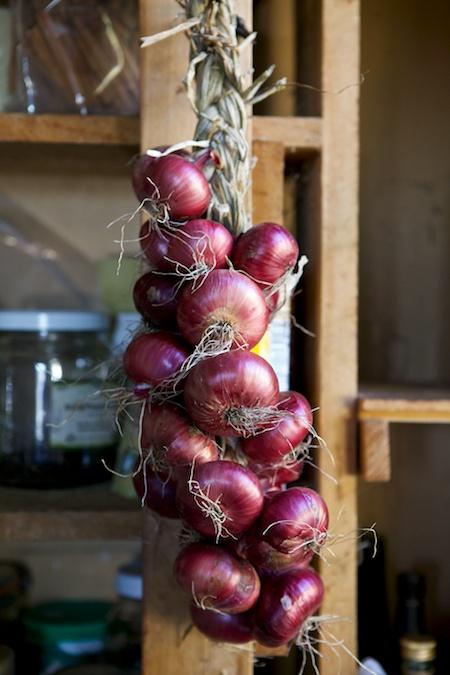 onion braids 1