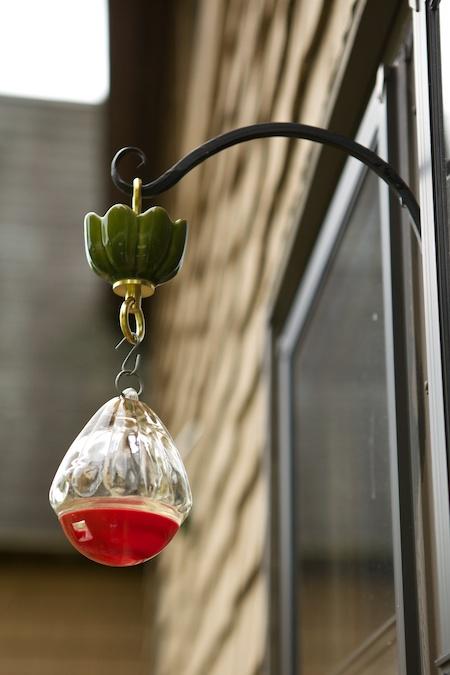 hummingbird feeder moat 2