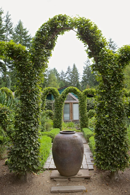 Herronswood hedge garden 1