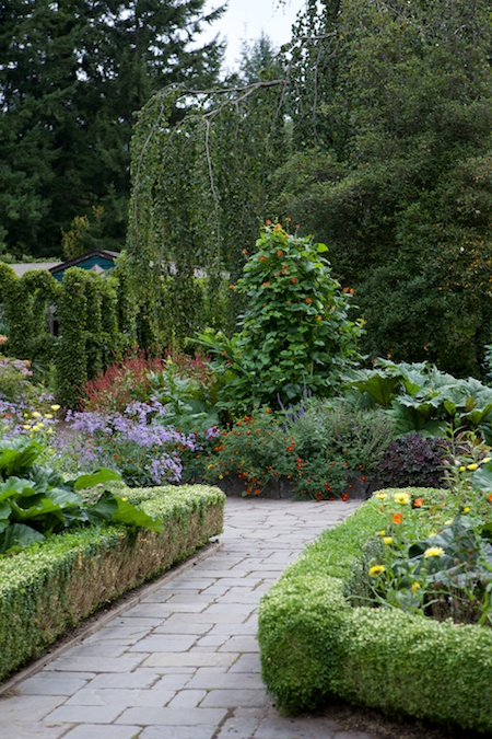 Heronswood formal garden 10