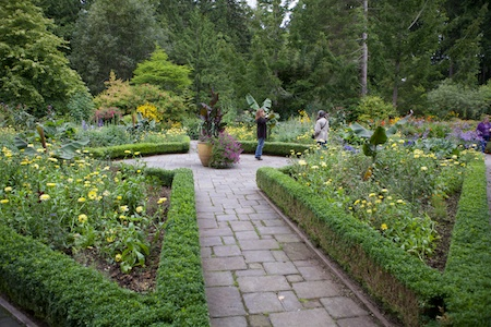 Heronswood formal garden 5