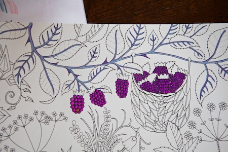 Coloring the enchanted forest 1