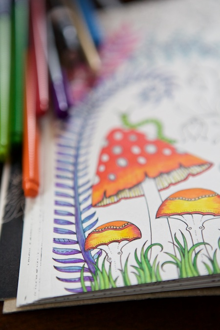 Coloring the enchanted forest 3