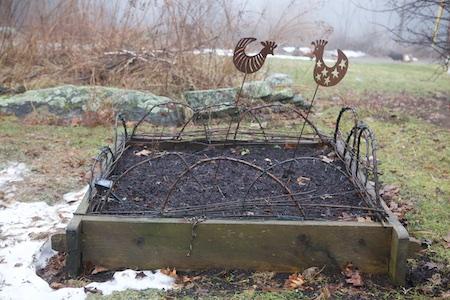winter seeding 1