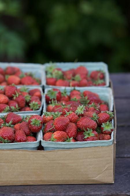 homegrown strawberries 2