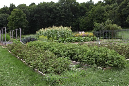 shelburne farms edible gardens 10