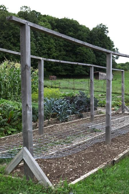 shelburne farms edible gardens 5