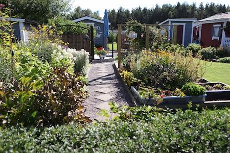 swedish_community_garden-11