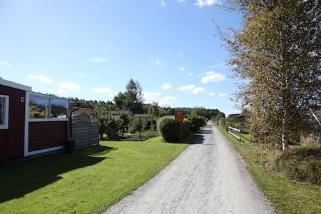 swedish_community_garden-12