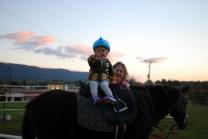 Turning in the saddle