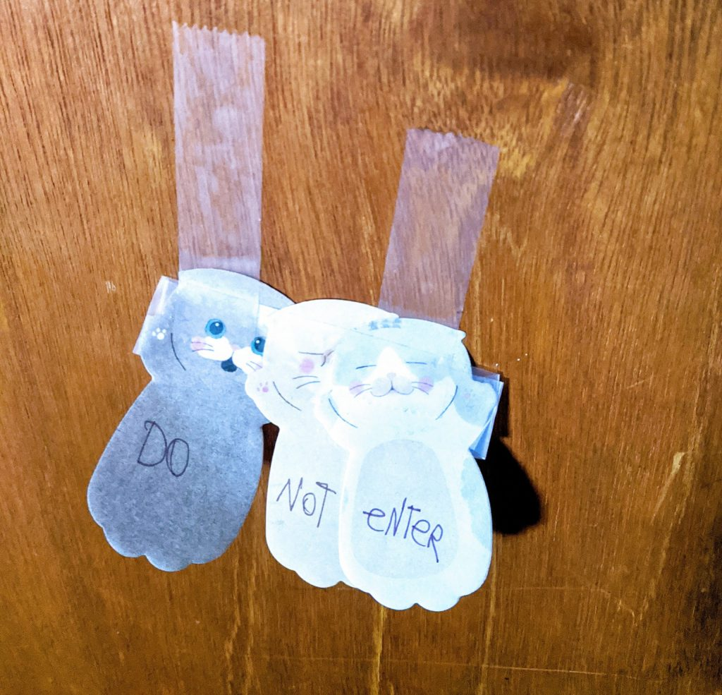 "Three adorable kitten post-its with ""DO NOT ENTER"" written on their tummies."