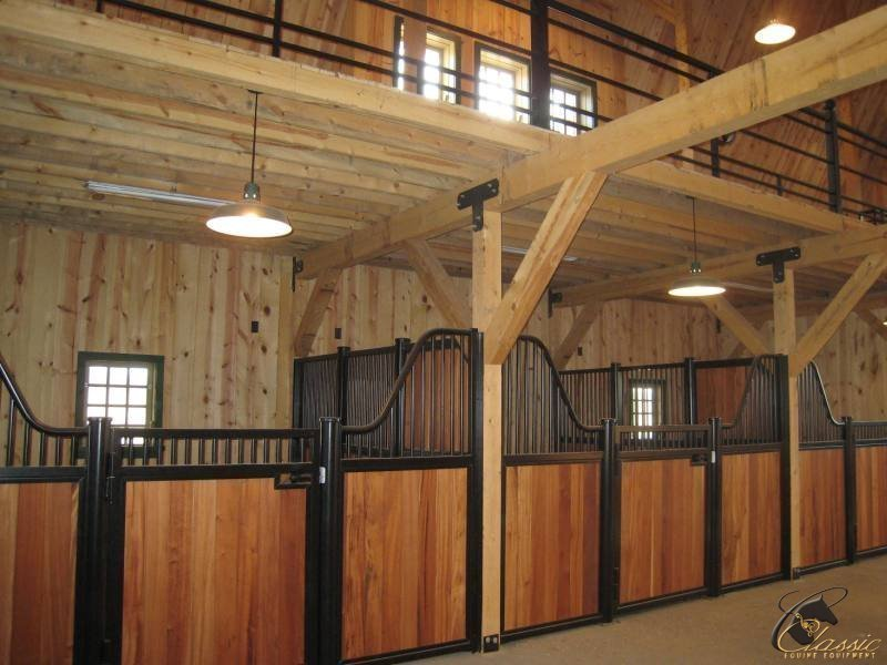 CLASSIC EQUINE HORSE STALLS  BARNS  Arabian Horses Stallions Farms Arabians for sale