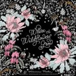 wherewildflowersgrow - Little Book of Colouring:  Patterns