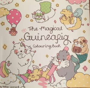 The Magical Guinea Pig Colouring Book Review