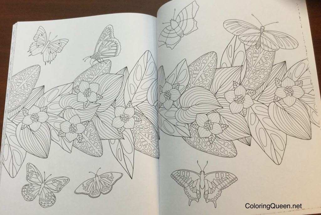 Wonderful Insects Coloring Book | Coloring Queen