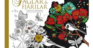 faglar och fjarilar - Hidden Nature's Frame Fantasia: A Colouring Book to Keep Your Favourite Moments
