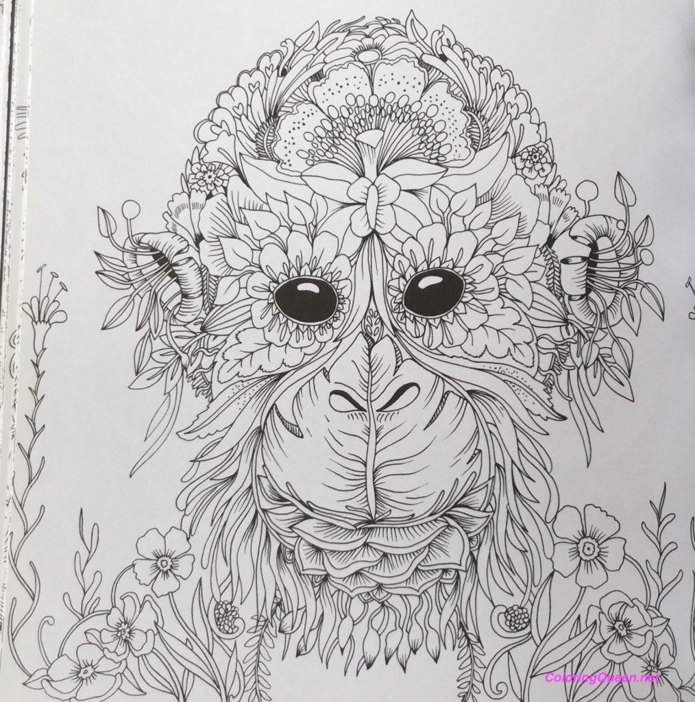 exotischer urwald exotic jungles coloring queen