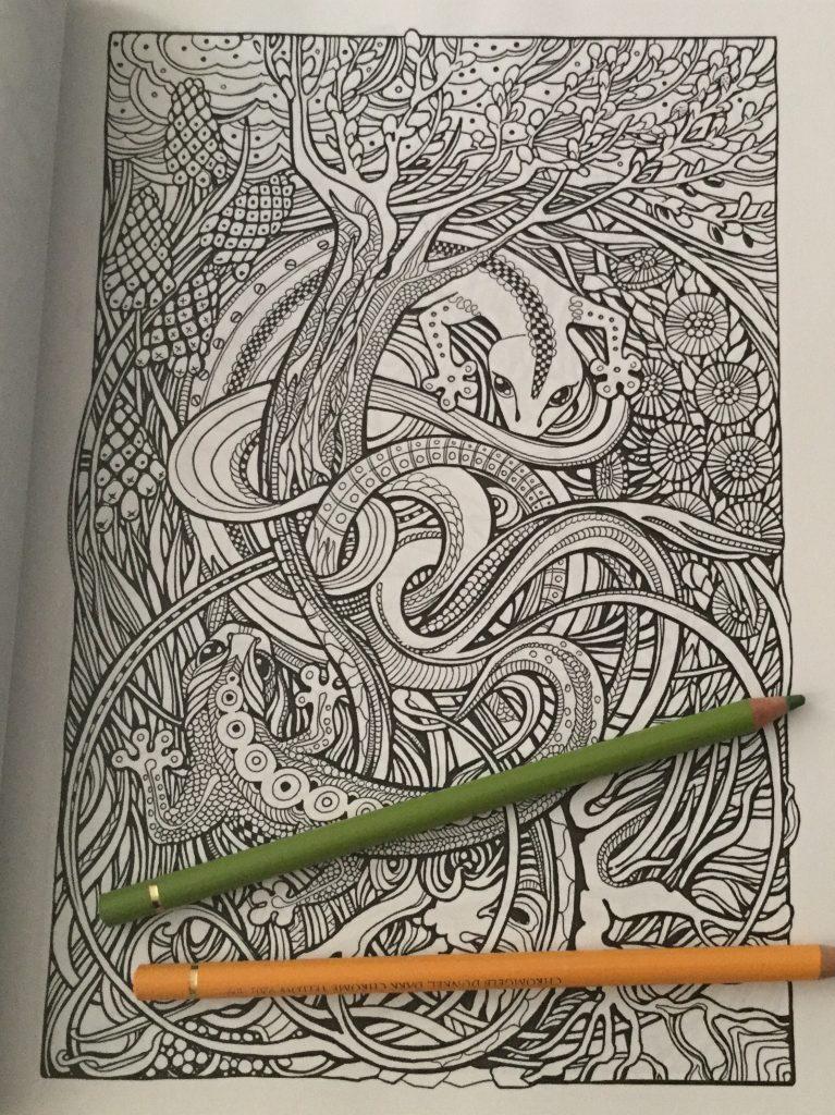Manic Botanic Coloring Book Review 2 767x1024 - Manic Botanic Coloring Book