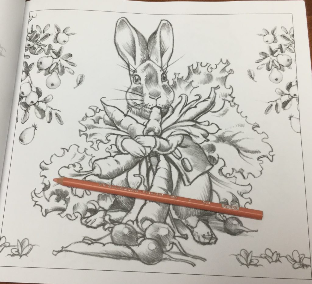 Coloring by numbers for rabbits - The Peter Rabbit Coloring Book A Classic Editions Coloring Book