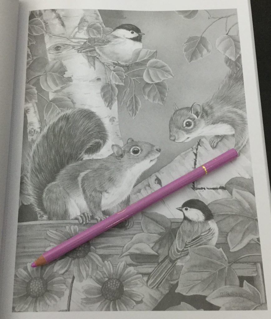 547172922 adorable animals grayscale coloring book