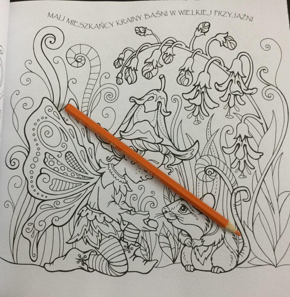 The coloring book analysis -  Elf From Kraina Basni Polish Coloring Book