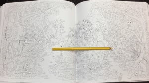 keiko cat coloring book  17 - keiko_cat_coloring_book_-17