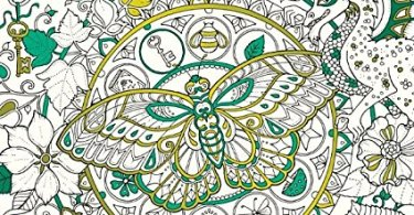 Ivy and the inky butterfly coloring book review - Cat Coloring Therapy Coloring Book Review