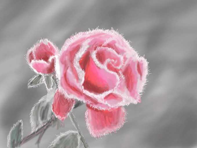 Simple Nice Girl Wallpaper Colors Live Frozen Rose By Lenchen