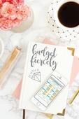 Budget_fiercely_mockup
