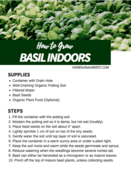 Growing_basil_indoors