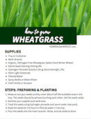 Wheatgrass_printable