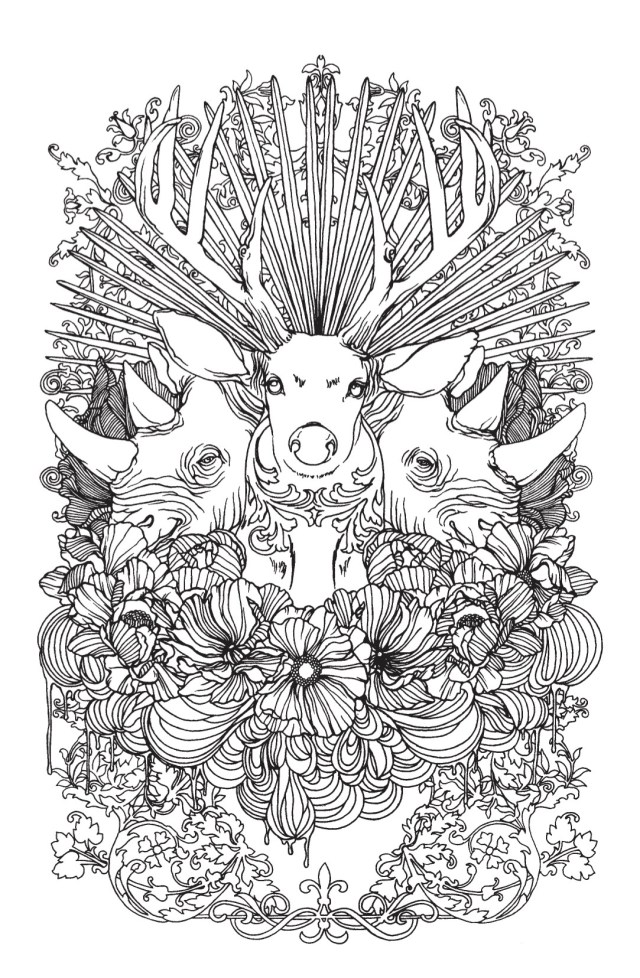 Buck and Rhino Adult Coloring Page - Craftfoxes