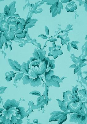 Hugs Wallpapers With Quotes Teal Plain Rose Wallpaper A4 Backing Paper Cup274039 10