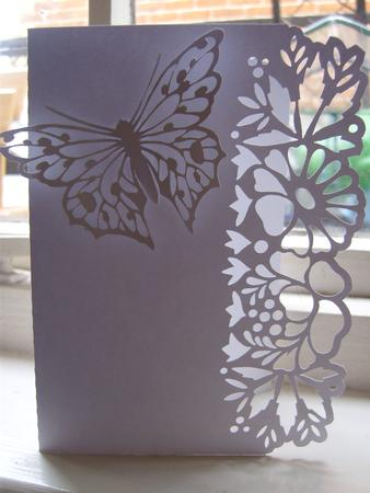 Border Edge Card 18 With Butterfly CUP691108198