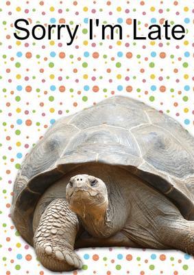 Card Creator Sorry I'm Late Tortoise Card CUP560062 1519