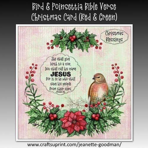bird and poinsettia bible