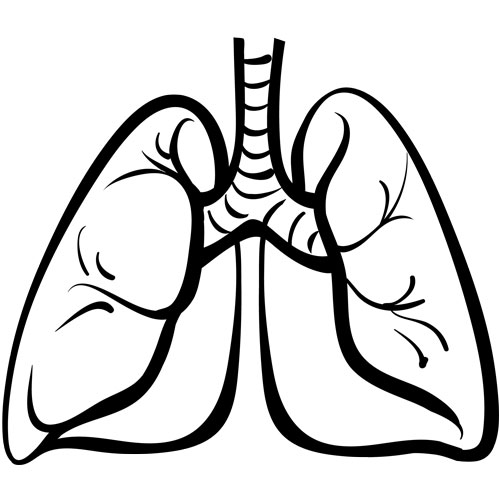 Actionable Mutations Common in Lung Cancer Patients Under 40