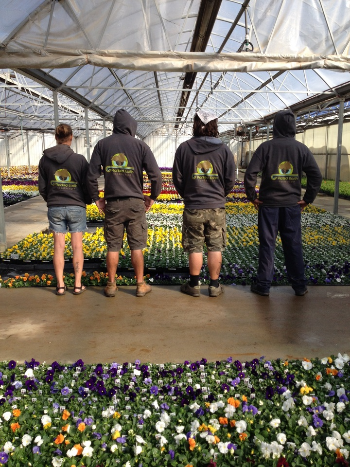 lawn care slogans and landscaping