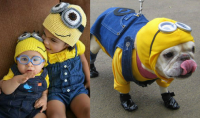 Who Wore the Halloween Costume Better: Dogs Vs. Babies Edition