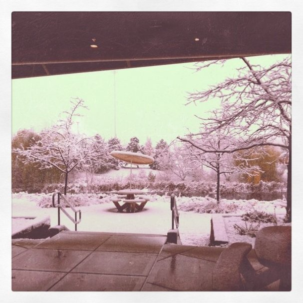 Thanks for turning on the snow #wordcampmsp