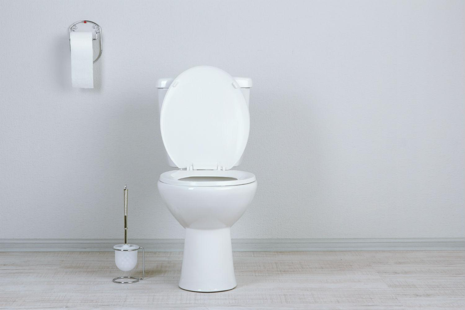 How To Unclog A Toilet Digital Trends