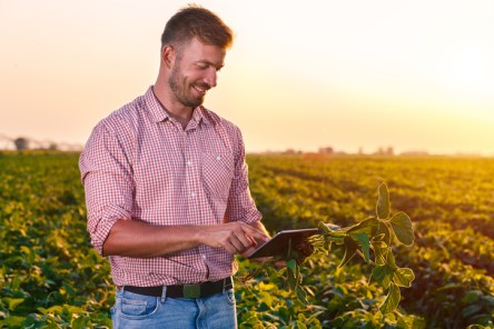 Marketing digital para o agronegócio colher resultados.