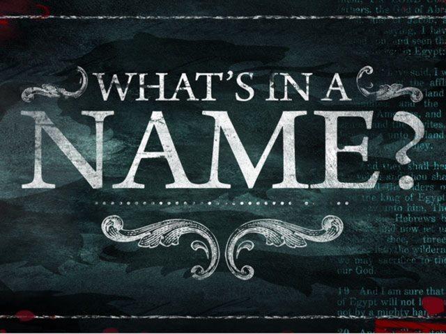 blog name ideas